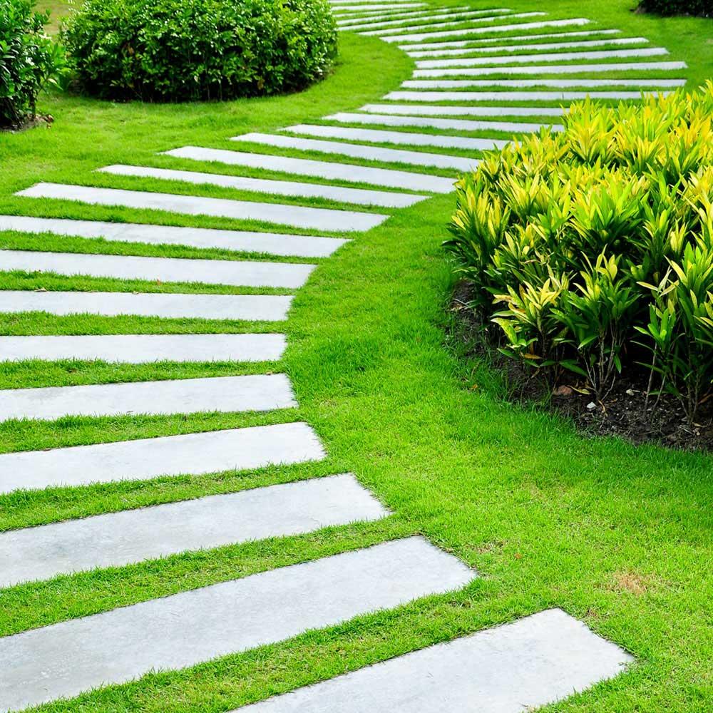 Landscape Design Service